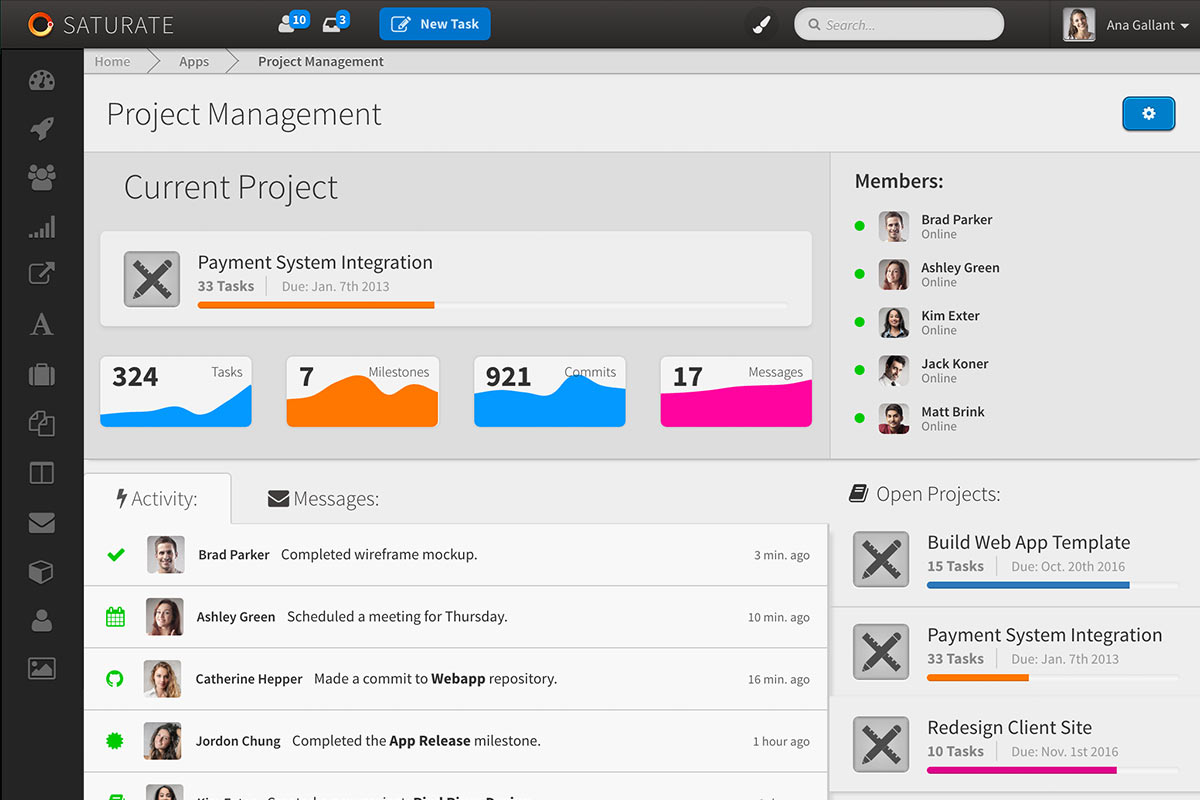 Saturate project management screenshot